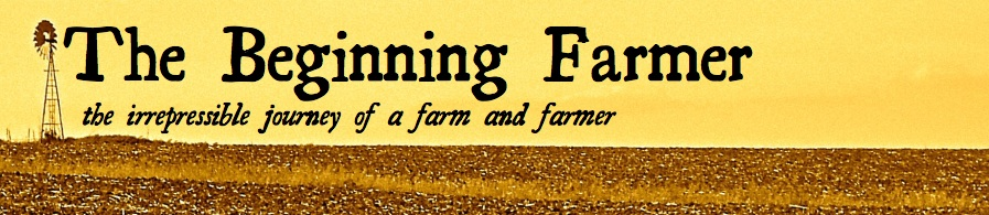 The Beginning Farmer header image