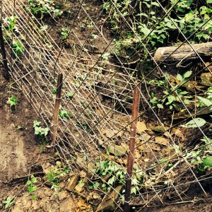 Fence Water Gap