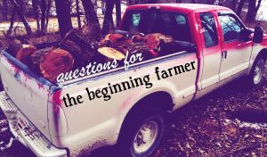 beginningfarmerquestions.jpg