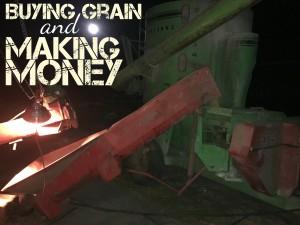 grinding pig feed